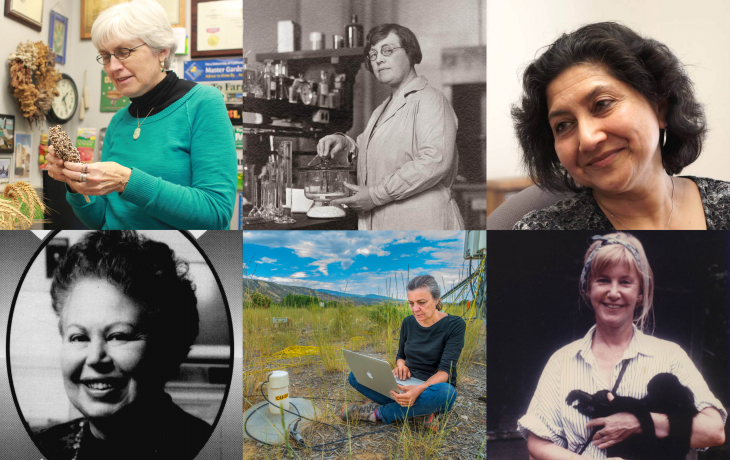 A grid of images of women