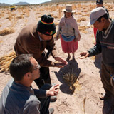 "FAIR TRADE: Sergio Núñez de Arco '95 (bottom left) was dubbed the ""king of quinoa"" by <cite>Time</cite> for his sustainably conceived growth of quinoa imports to the United States, mainly from his native Bolivia. Eugenio Choque (right) and his family, farmers from the Uyuni region, inspect the harvest with Miguel Choque, the manager of their cooperative. PHOTO: Vitaliy Prokopets"