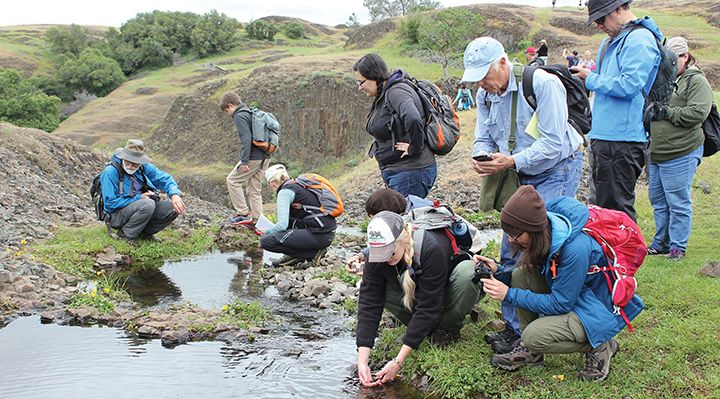 people gathering samples at a river