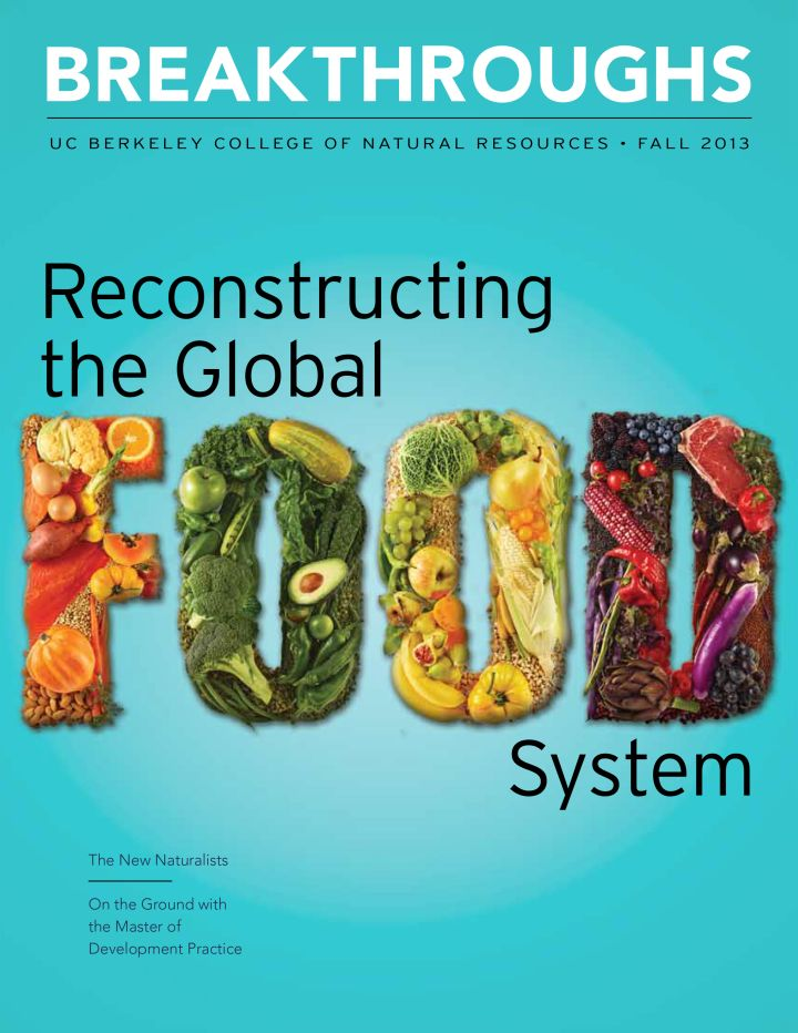 Breakthroughs Fall 2013 issue on Reconstructing the Global Food system