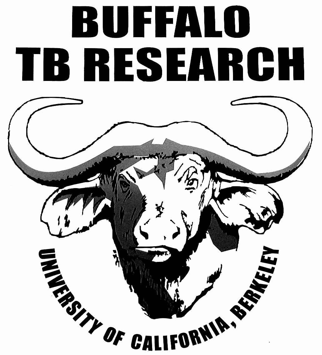 an introduction to the bovine tuberculosis the disease Diagnosis of bovine tuberculosis: review of main techniques introduction bovine tuberculosis disease caused by mycobacterium bovis.