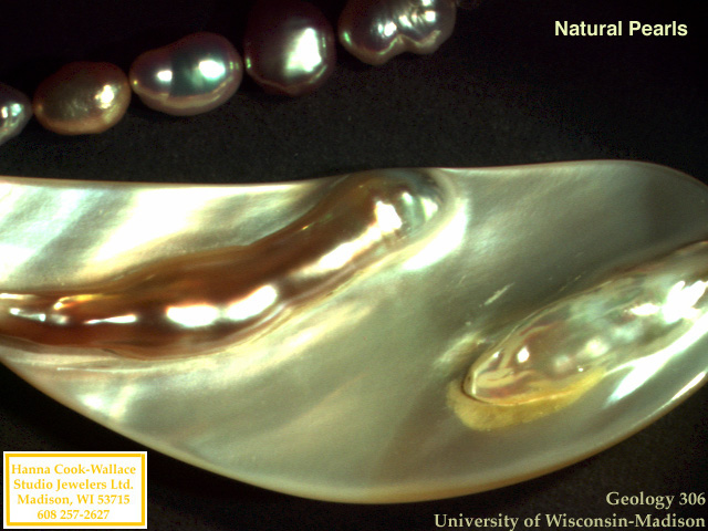 Pearls and other organic gems