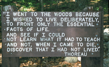 Antithesis thoreau where i lived and what i lived for