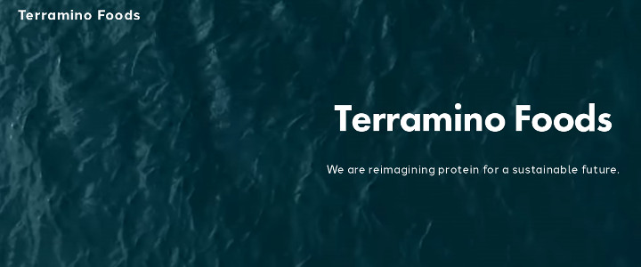 Hungry for Change: My Experience at a Mission-Driven Startup Company Business Development Internship at Terramino Foods