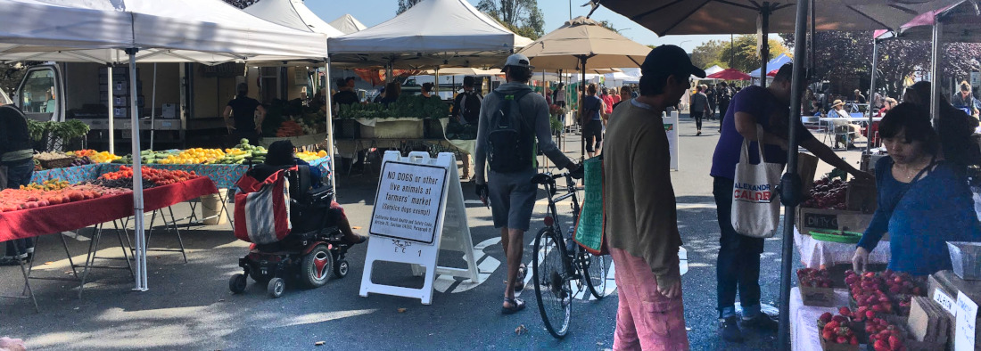 Sam Phillips at the Berkeley Farmers Market