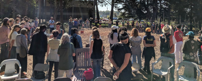 Connection with the Land, my Food System, and my Community