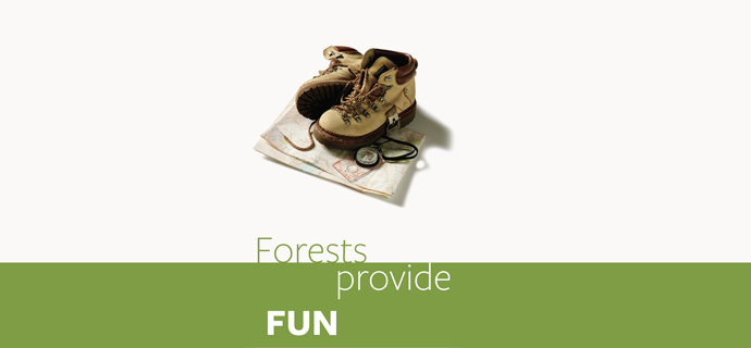 Forests Provide Fun