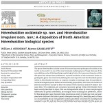 Heterobasidion: A Disposition of Two North American Species