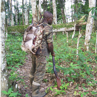 Bushmeat hunter