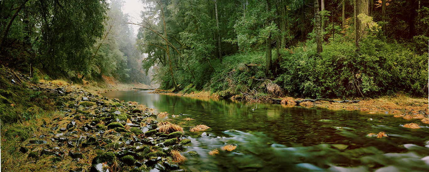 Bridging ecology and hydrology to inform sustainable water management