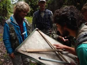 Rosie Gillespie, Darko Cotoras, and Dan Gruner examine arthropods collected on a beat sheet.