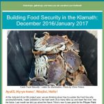Food Security Newsletter with image of crabs in basket.