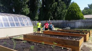 Greenhouse at left, four large raised garden beds filled with soil and small plant starts. Two young men and a woman stand between the raised beds.