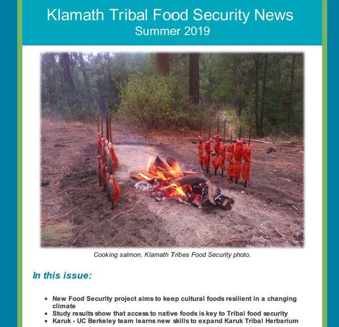 Title Klamath Tribal Food Security News - Summer 2019 above image of salmon on roasting sticks around firepit
