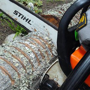 SOD: Cleaning Tools & Equipment