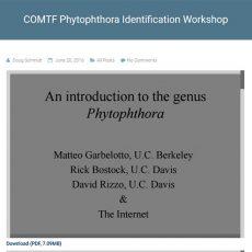 COMTF Phytophthora Identification Workshop