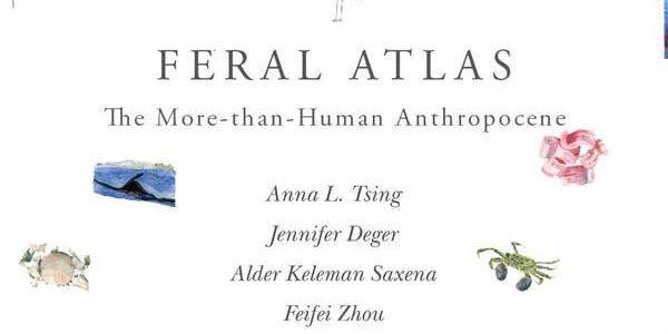 Feral Atlas Digital Monograph
