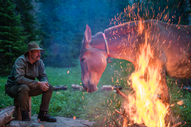 Yellowstone Campfires. Mountain guide Wes Livingston and his mule Rosie by a camp fire in the Thorofare, western Wyoming.