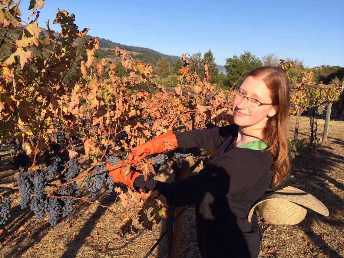 Laura Driscoll at a vineyard