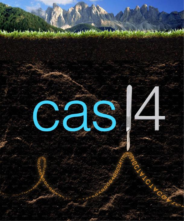 Cas14 image.