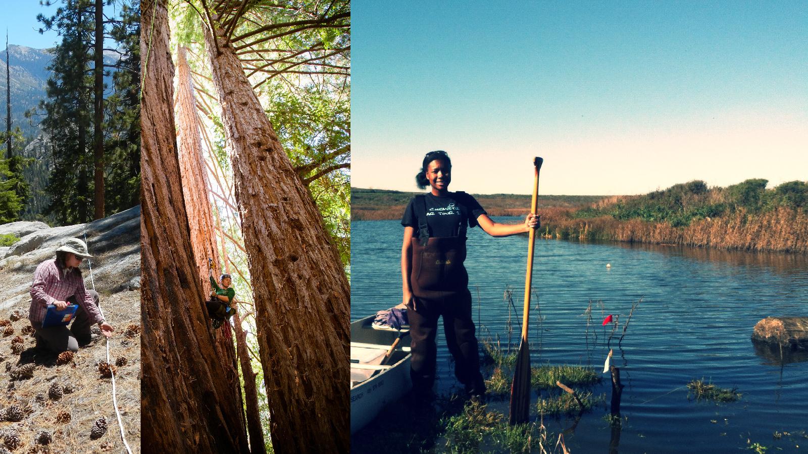 Photos courtesy of ESPM graduate students Kate Wilkin, Roxy Cruz, and Chandra Richards.
