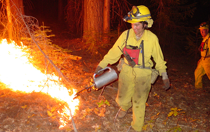 Former graduate student lighting a prescribed burn with a torch