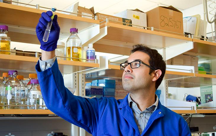 Graduate Student Israel Figueroa examines a test tube