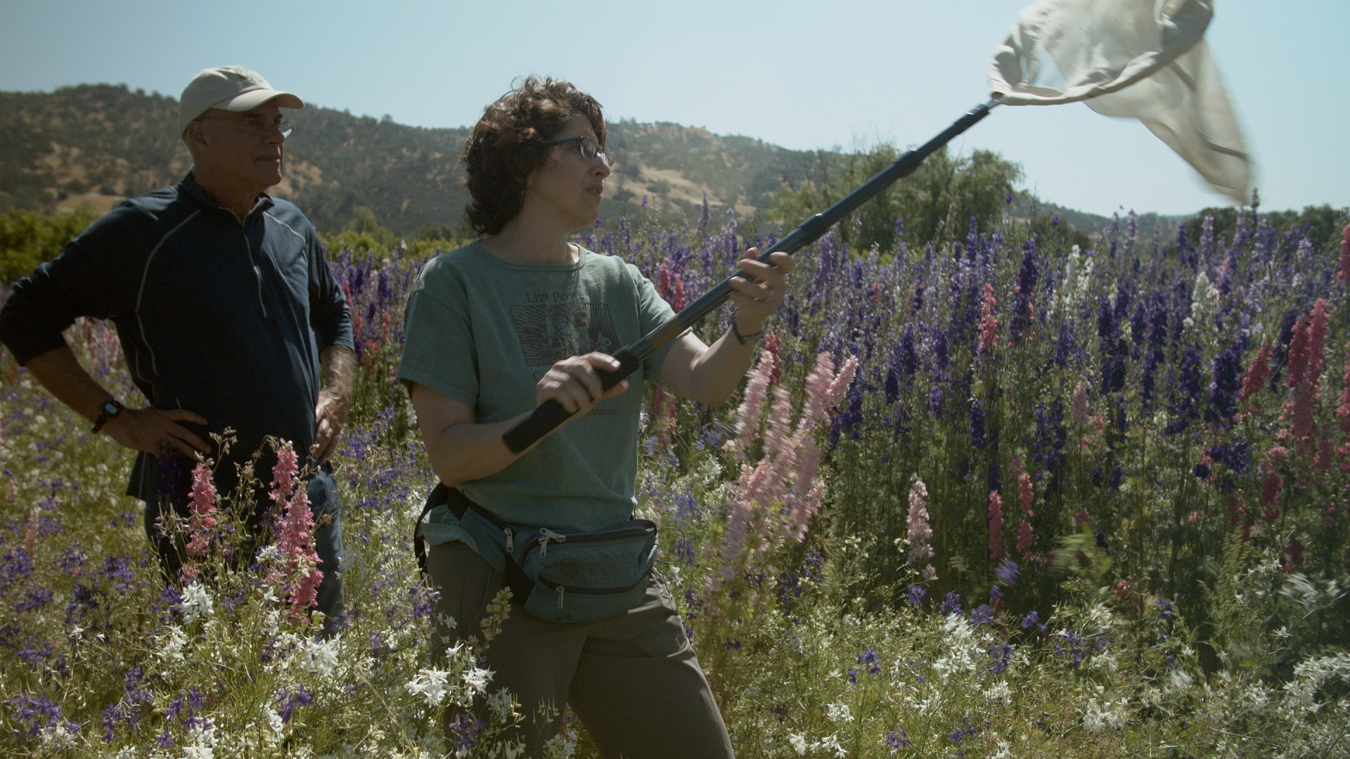 Mark Bittman strolls through a scenic Northern California farm with UC Berkeley's Claire Kremen as she explains why it's important to use native pollinators -- especially wild honeybees -- for crops.