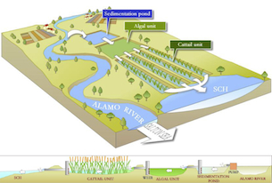 Salton_Sea_Proposed_wetland_design_305.jpg