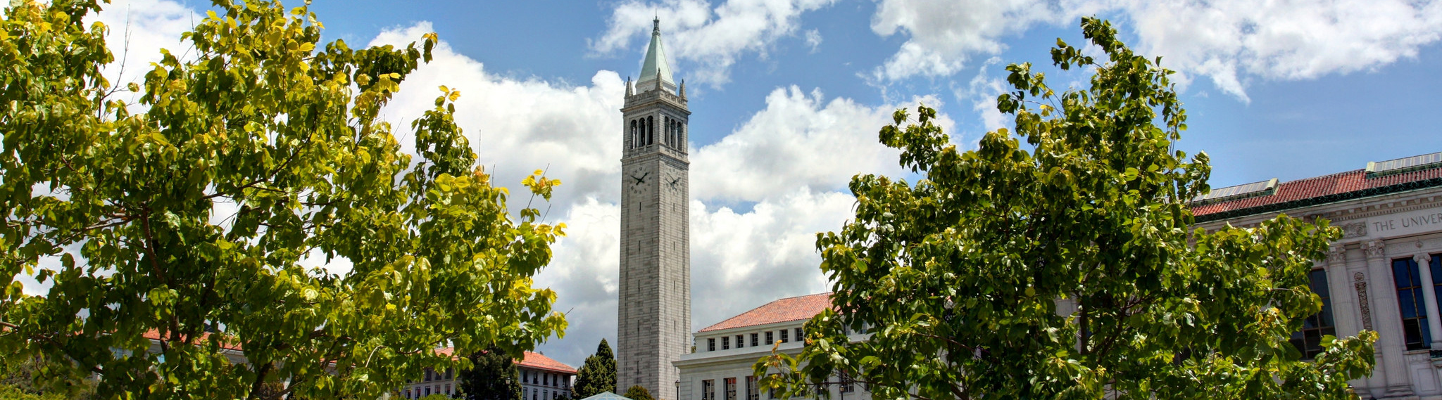 Scene of the campanile on the UC Berkeley campus