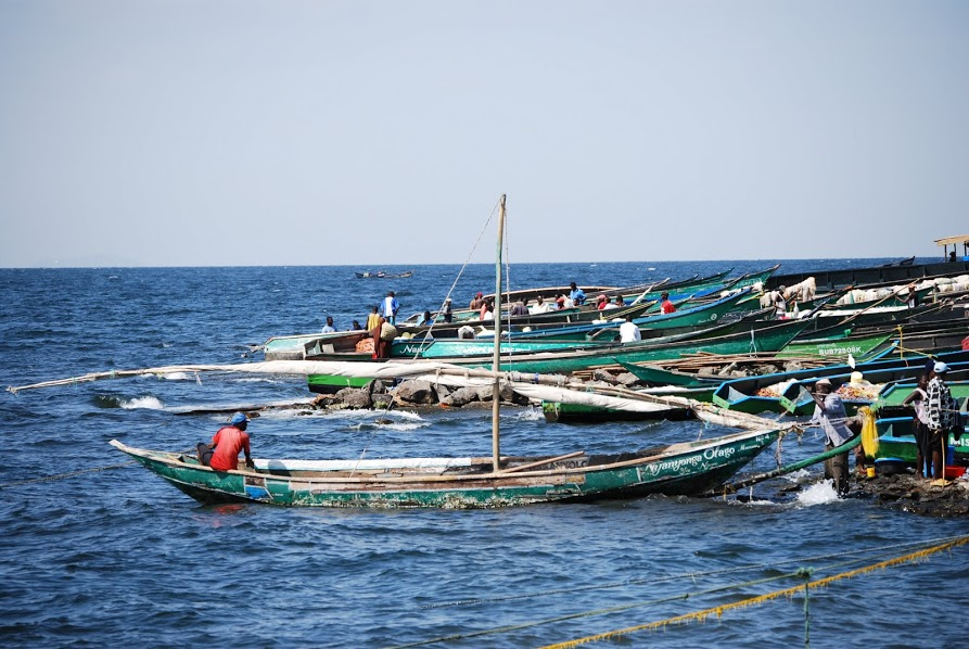 Image of fishing boats
