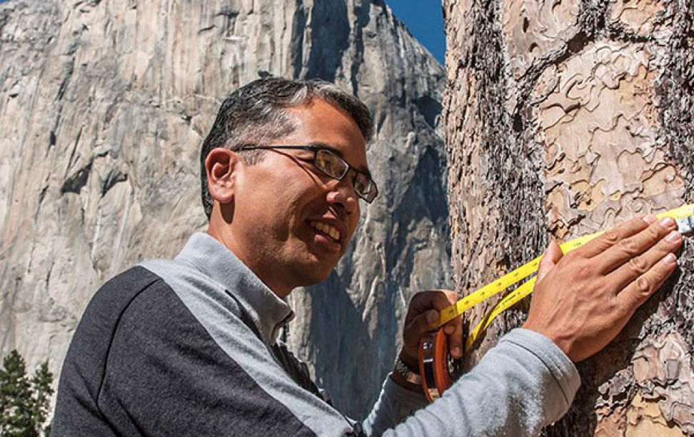 Patrick Gonzalez measuring a tree in a national park.