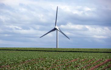 Wind turbine on a farm