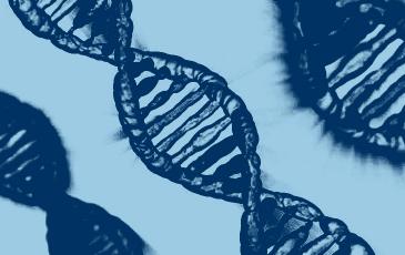 Illustration of a DNA strand
