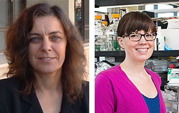 Professors Seed and Banfield each recieved amazing grants for science research