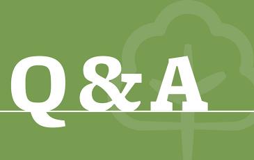 Q&A thumbnail.