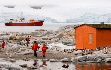 Researchers with penguins in Antarctica, with a boat in the background.