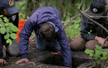 Three people digging in the ground for archeological research