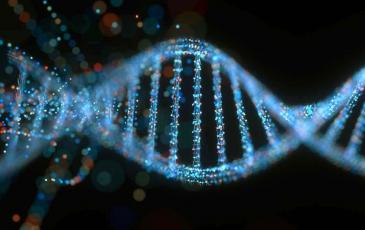 DNA strand upclose.