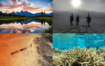 a grid of beautiful images