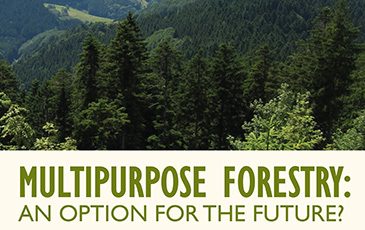Multipurpose forestry - S. J. Hall lecture