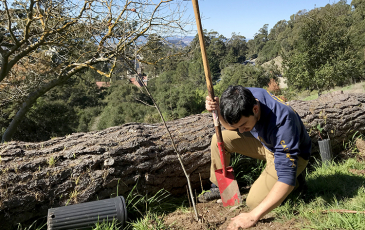 A man digs in soil with trees in the background