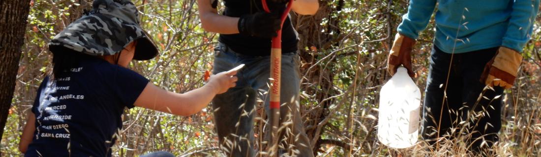Mt. Diablo Fieldwork