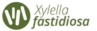Xylella fastidiosa website