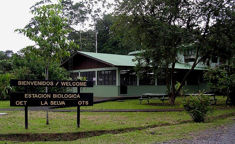Costa Rica - Oboyski