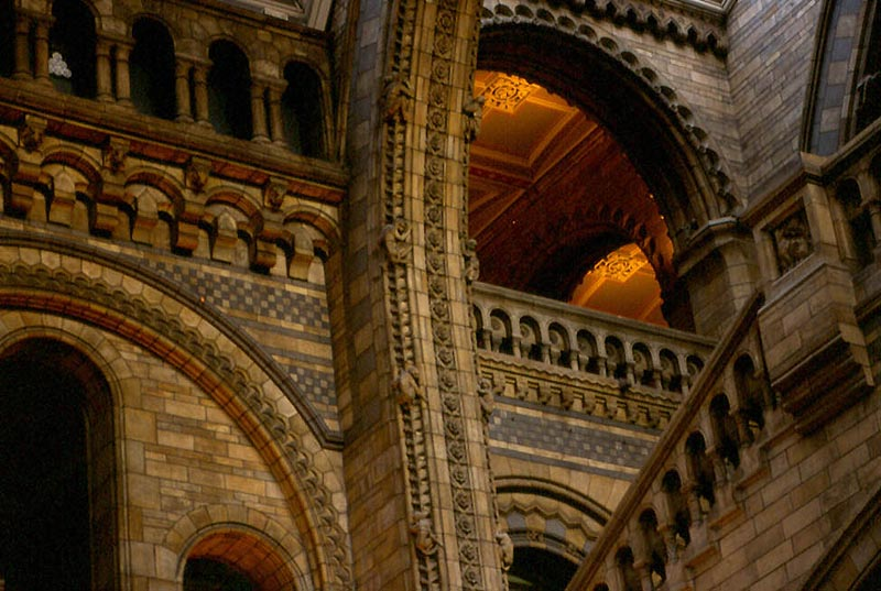 About The Natural History Museum