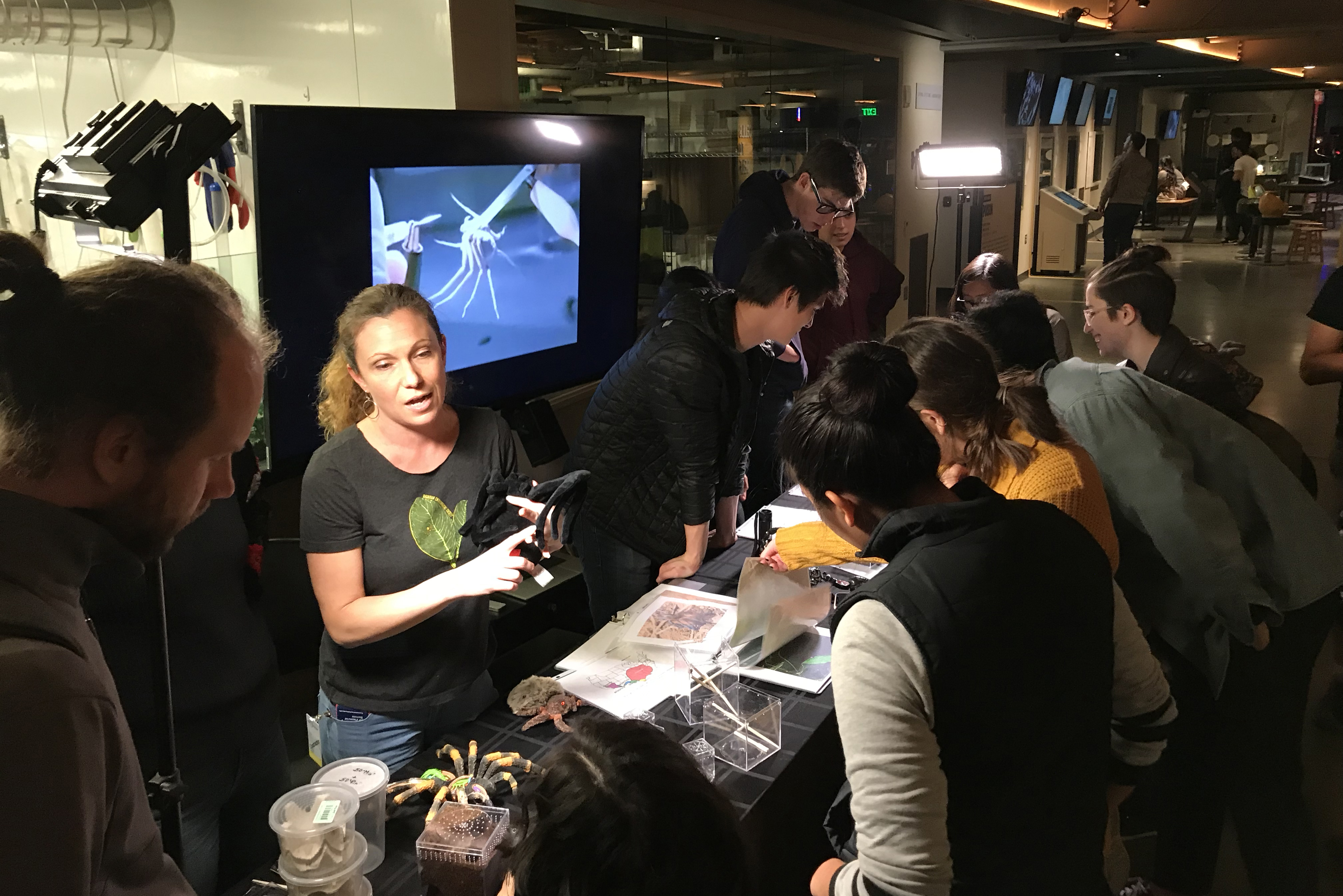 Ashley Adams Wikipedia exploratorium after dark – poison – seira ashley adams
